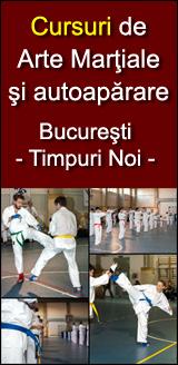 Cursuri de Arte Martiale si autoaparare - Sector 3 Bucuresti